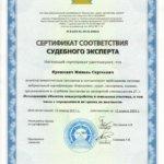 Сертификат Ярошевич Михаил Сергеевич